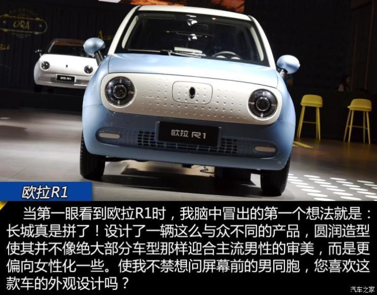 长城汽车 欧拉R1 2019款 351km 灵睿版