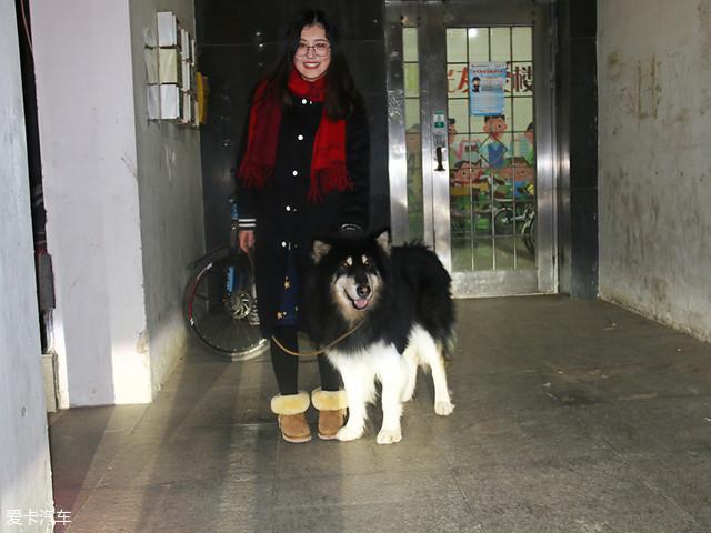 单身与狗的一次旅行