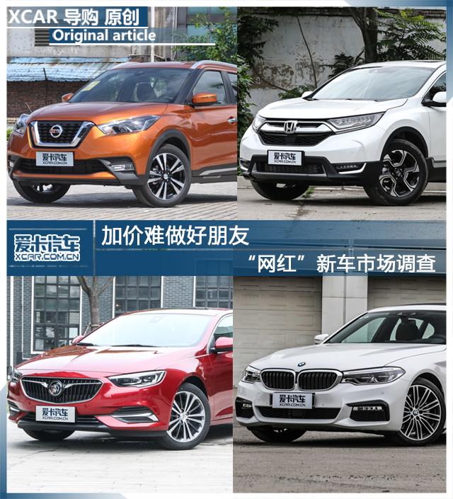 """""""网红""""新车市场调查"""
